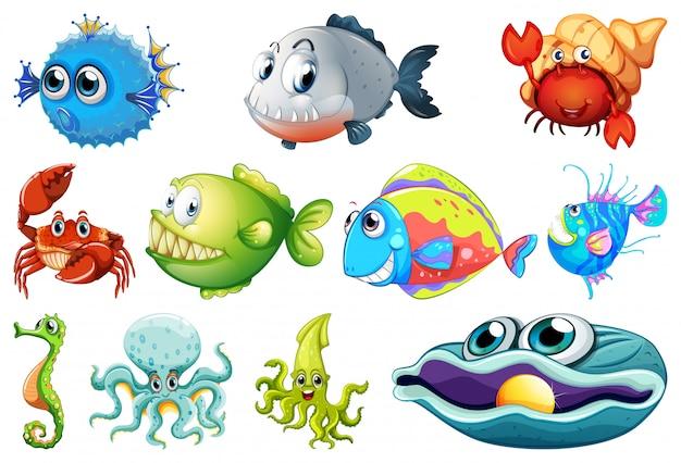 Conjunto de criaturas marinas