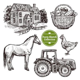 Conjunto de croquis dibujado a mano de granja