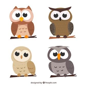 Conjunto de cuatro búhos de dibujos animados