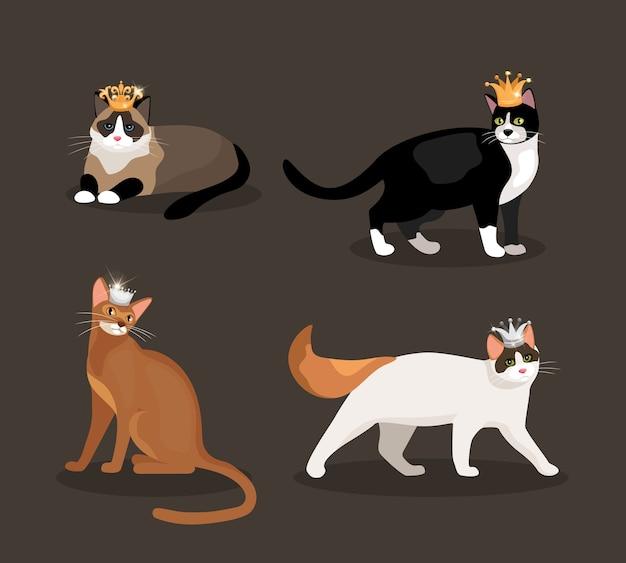 Conjunto de cuatro gatos con coronas con pieles de diferentes colores, uno de pie, caminando, acostado y sentado, ilustración vectorial