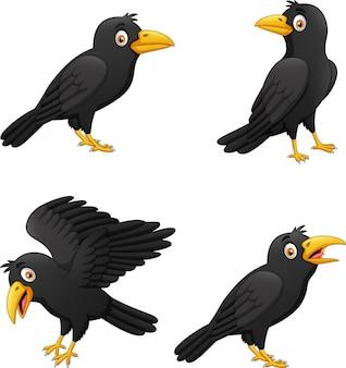 Conjunto de cuervo de dibujos animados con diferentes expresiones