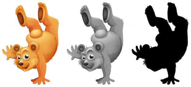 Conjunto de danza del personaje del oso.