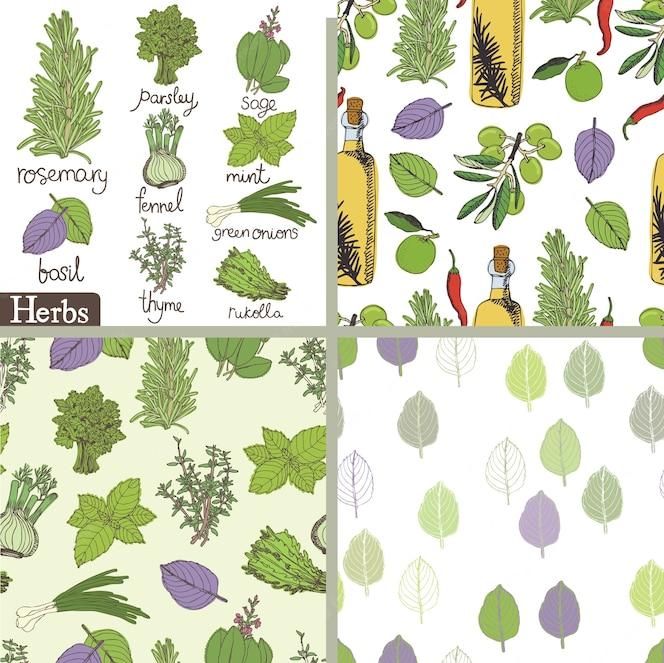 Conjunto de hierbas y especias