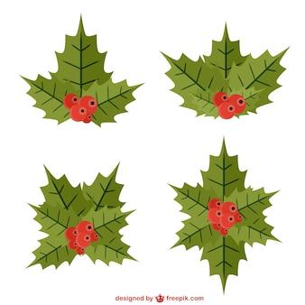 Conjunto de hojas de acebo