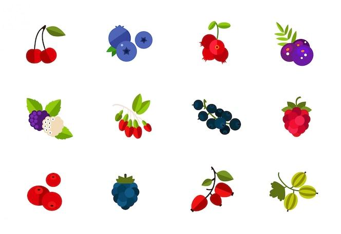 Conjunto de iconos de bayas silvestres y cultivadas