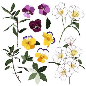 Conjunto de vector de tarjeta de felicitación floral salvaje de verano