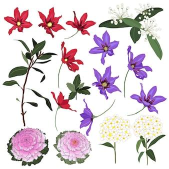 Conjunto de vectores florales silvestres de verano