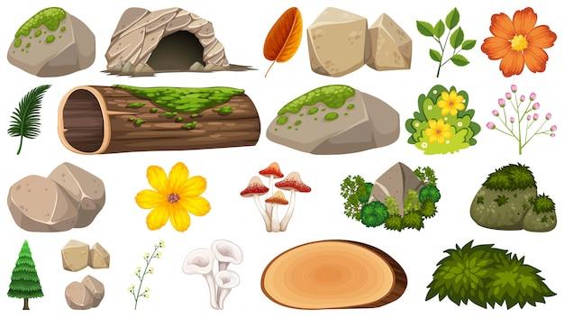 Conjunto de decoración de la naturaleza.