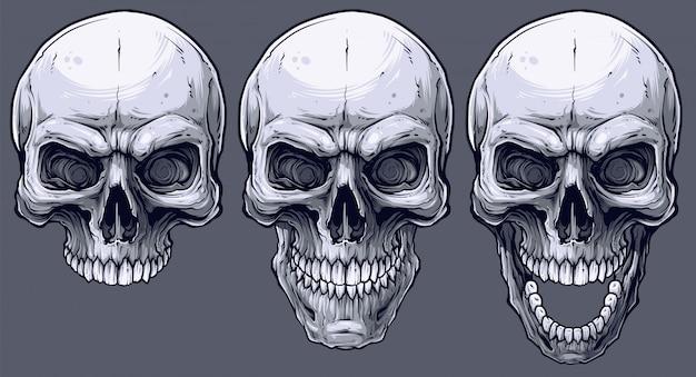 Conjunto detallado de cráneos humanos en blanco y negro gráfico.