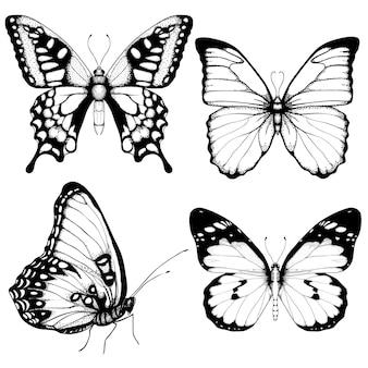 Conjunto dibujado a mano mariposa en blanco
