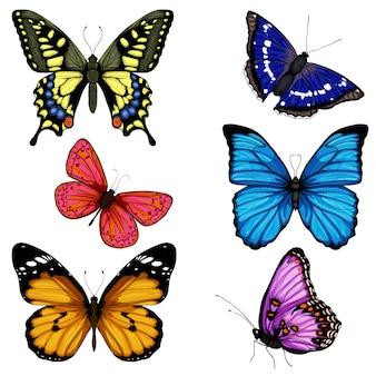 Conjunto dibujado a mano mariposa colorido en blanco