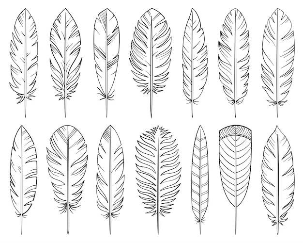 Conjunto dibujado a mano de plumas, signo de pluma de tatuaje de línea, pluma caligráfica, penacho.