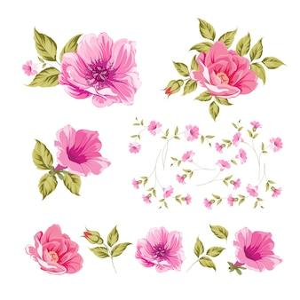 Conjunto de dibujo a mano de línea rosa.