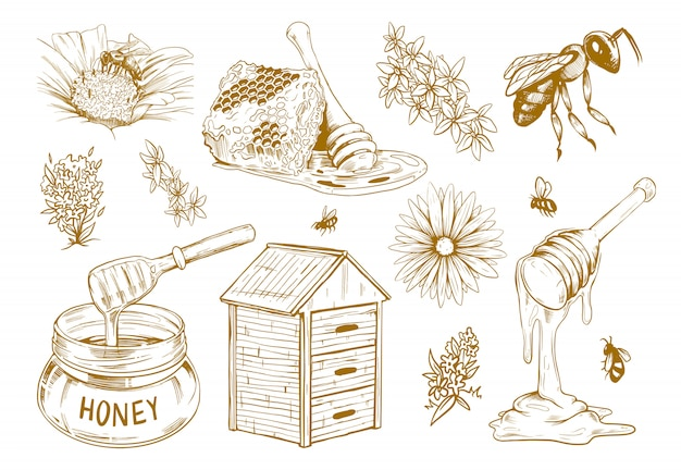 Conjunto de dibujo plano de miel dibujado a mano