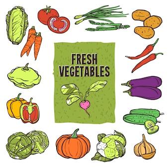 Conjunto de dibujo de verduras