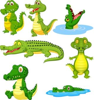 Conjunto de dibujos animados cocodrilo verde conjunto