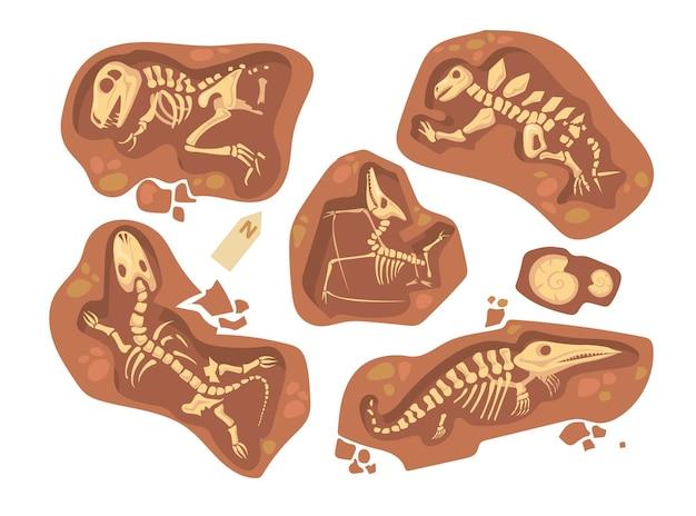 Conjunto de dibujos animados de diferentes fósiles de dinosaurios. ilustración plana.