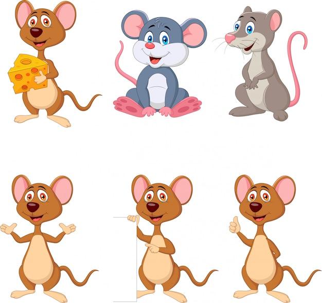 Conjunto de dibujos animados divertido mouse colección