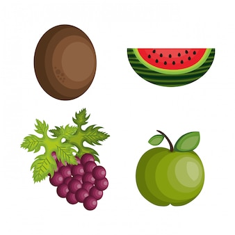 Conjunto de dibujos animados frutas diseño tropical