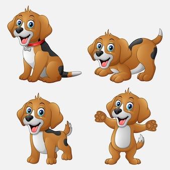 Conjunto de dibujos animados perros divertidos colección