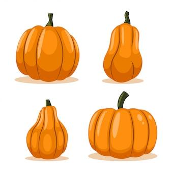 Conjunto de dibujos animados de vector de calabaza aislado sobre fondo blanco.