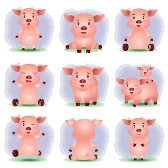 Conjunto de dibujos animados de vector de cerdo lindo