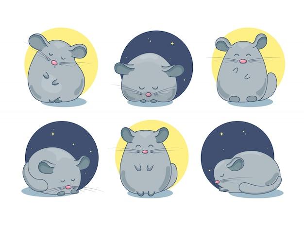 Conjunto de dibujos de mascotas chinchilla