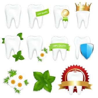 Conjunto de dientes