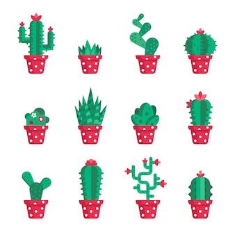Conjunto de diferentes cactus.