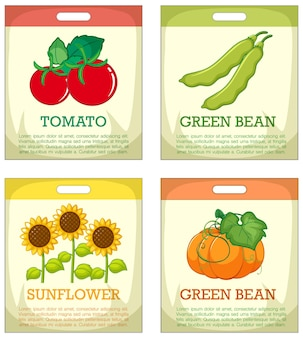 Conjunto de diferentes envases de semillas sobre fondo blanco.