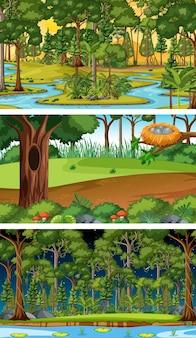 Conjunto de diferentes escenas horizontales de bosque en diferentes momentos.