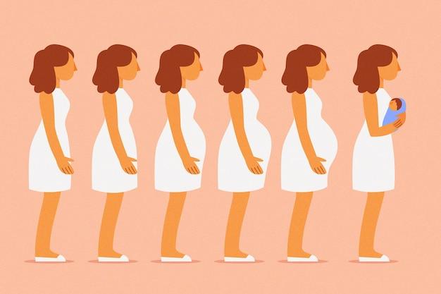Conjunto de diferentes etapas del embarazo.