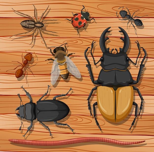 Conjunto de diferentes insectos en superficie de madera.