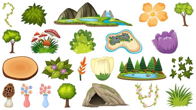 Conjunto de diferentes plantas y paisajes.