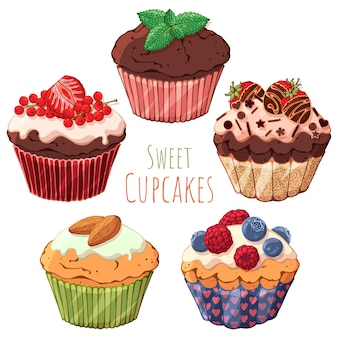 Conjunto de diferentes tipos de dulces cupcakes decorados con bayas