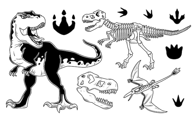 Conjunto de dinosaurios