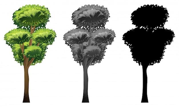 Conjunto de diseño de árbol