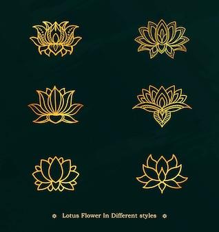 Conjunto de diseño de flor de loto de línea dorada