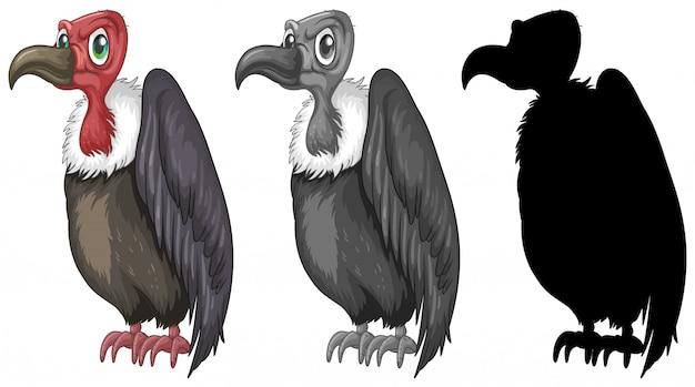 Conjunto de diseño de personajes buitre.