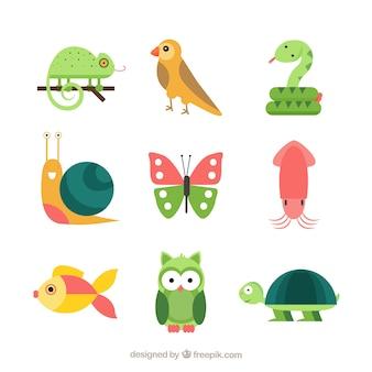 Conjunto divertido de animales con diseño plano