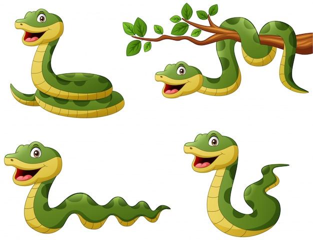 Conjunto de divertidos dibujos animados de serpiente verde. ilustración