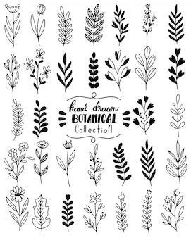 Conjunto de doodle de flores dibujadas a mano