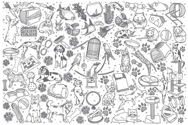 Conjunto de doodle de mascotas dibujadas a mano