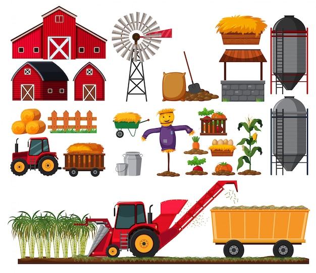 Conjunto de elemento de la granja de caña de azúcar