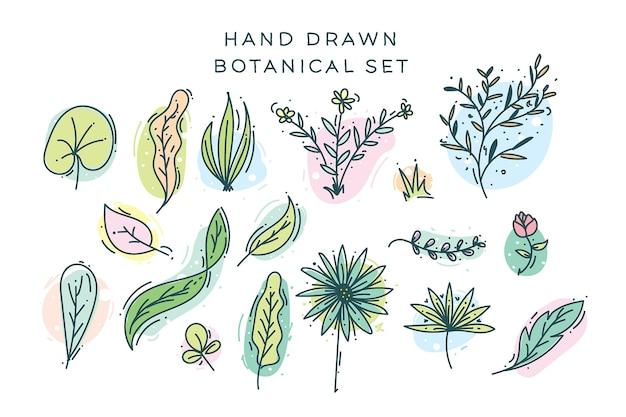 Conjunto de elementos botánicos dibujados a mano