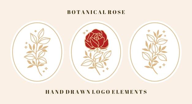 Conjunto de elementos botánicos vintage de flores y hojas de rosas para el logotipo y la marca de belleza femenina