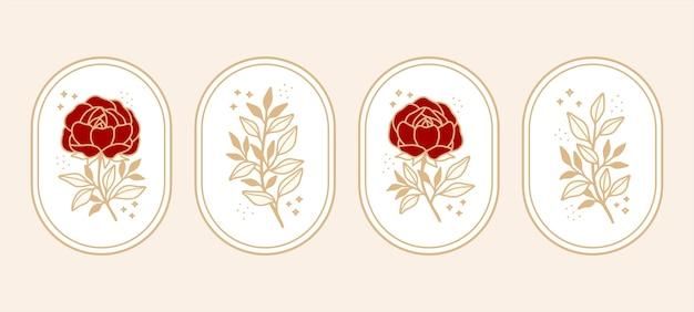Conjunto de elementos botánicos vintage de rosa, peonía y rama de hoja para marca de belleza o logotipo femenino