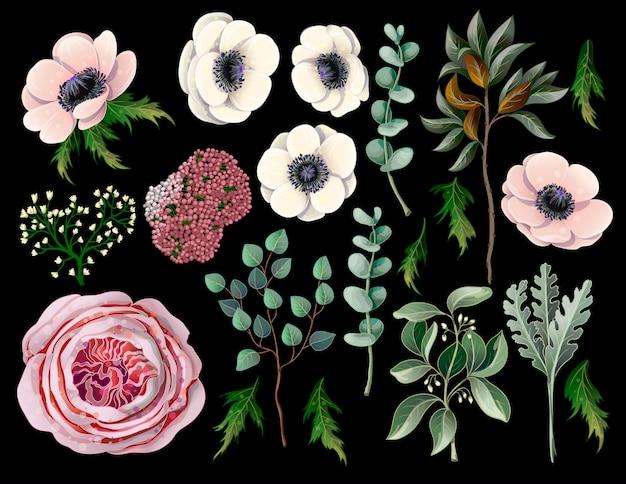 Conjunto con elementos botánicos