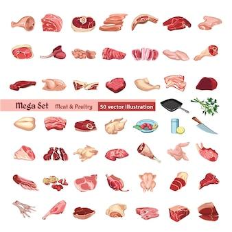 Conjunto de elementos de carne y aves de corral de colores