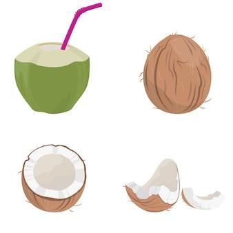 Conjunto de elementos de coco. fruta jugosa en estilo de dibujos animados.